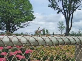 fencing-03