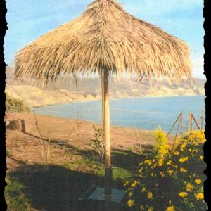 Mexican Rain Cape Thatch umbrella cape
